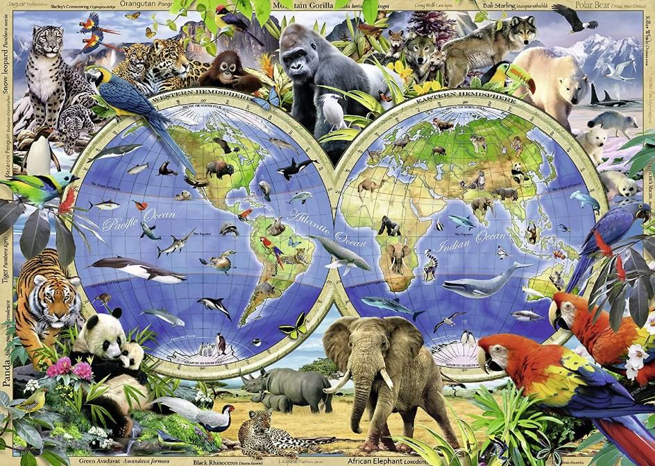 Ravensburger World of Wildlife Map Jigsaw Puzzle 300 PCS
